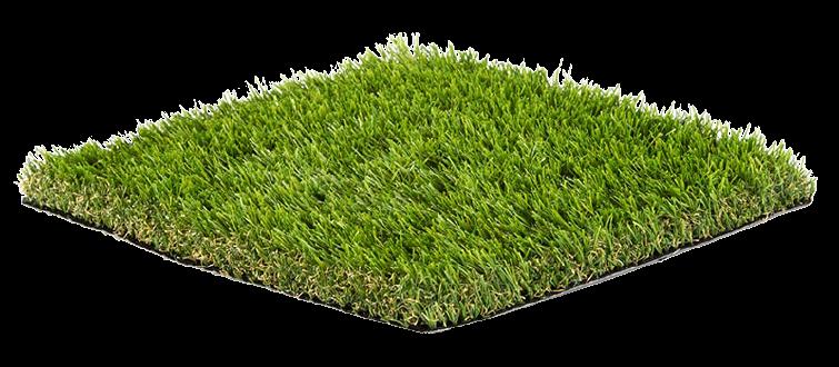 AGW Moss image